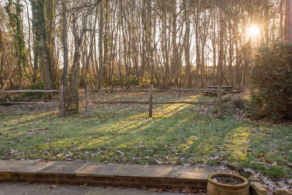 The Woodland Studio - Uckfield Sussex