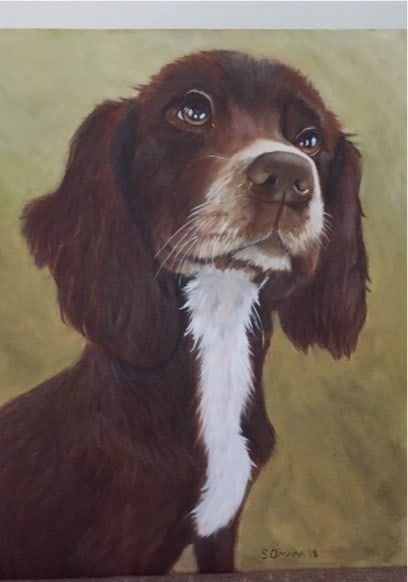 Sue Omara Art - Sprocker Puppy 4