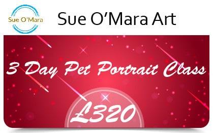 Sue Gift Cards 3 Day Pet Portrait Class