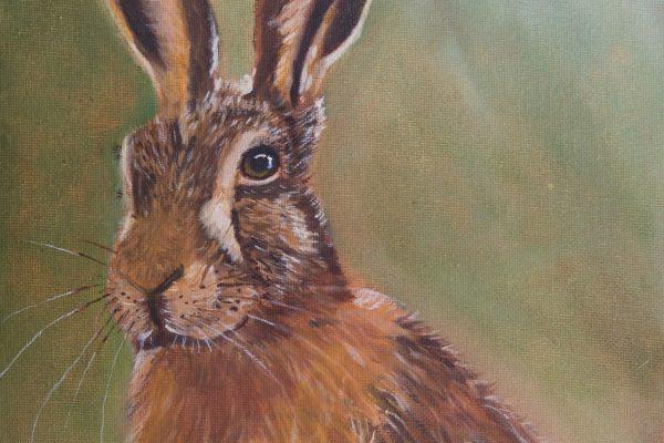 Regal Hare